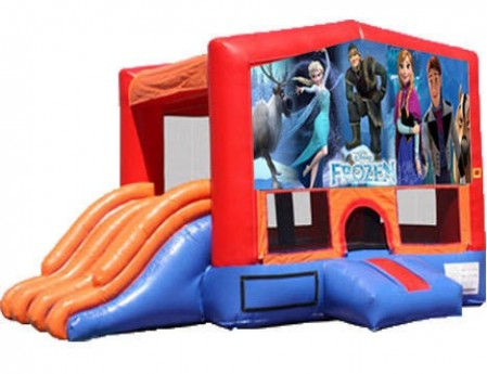 4-in-1 Combo with Double Slides - Frozen (Dry)